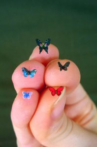 tiny butterflies by Julia Cissell